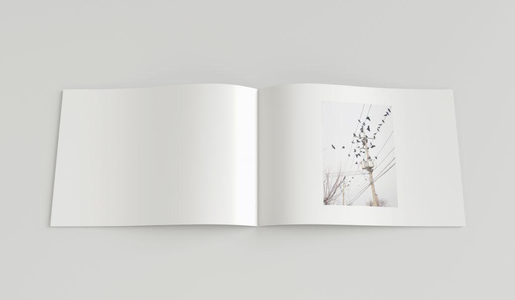 Gestaltung eines Buches